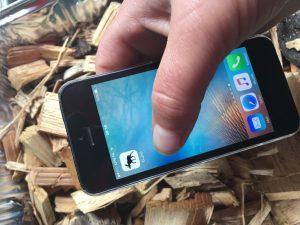 Eenvoudig rekenen met houtige biomassa